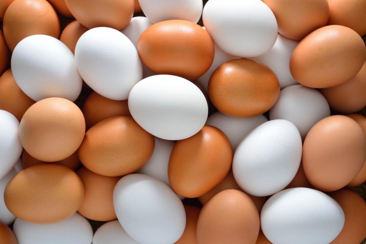 kahverengi-beyaz-yumurtalar-yeni