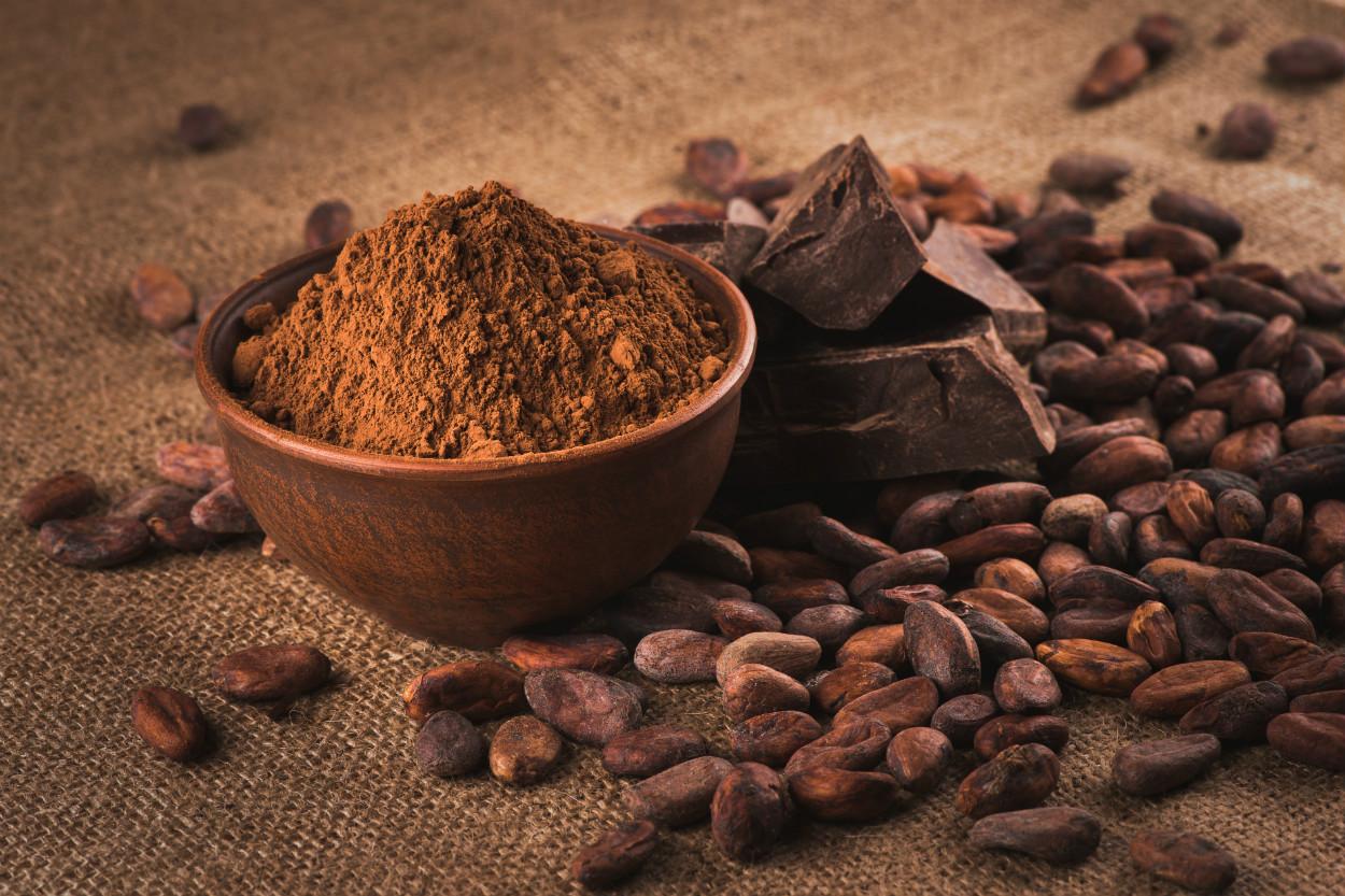kakao-cikolata-aralik-2020