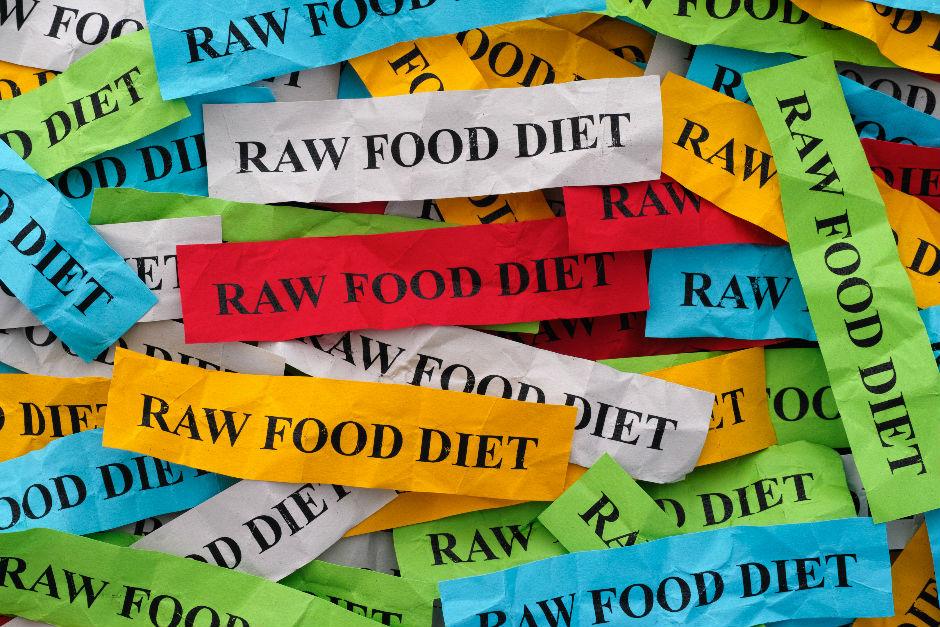 raw-food-diyet