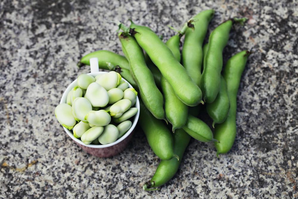 bakla-yaz-sebzeleri
