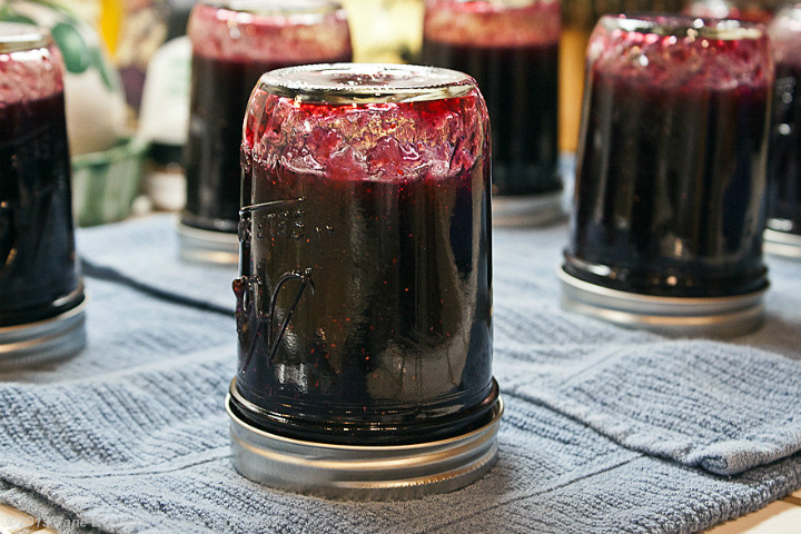 http://theheritagecook.com/enjoy-the-flavors-of-summer-with-homemade-blueberry-jam/ | theheritagecook