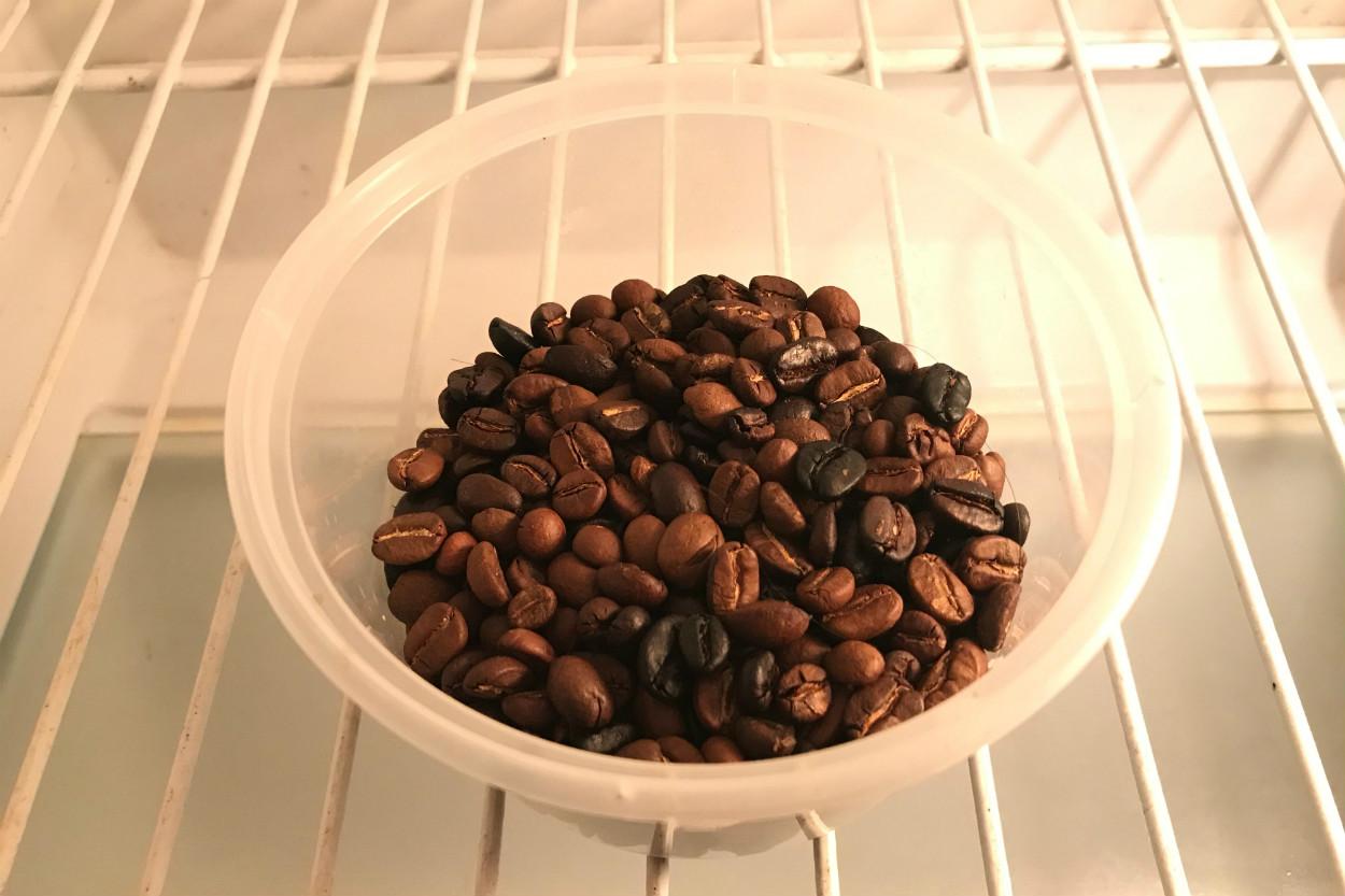 buzdolabinda-kahve-cekirdekleri-kasim-2020
