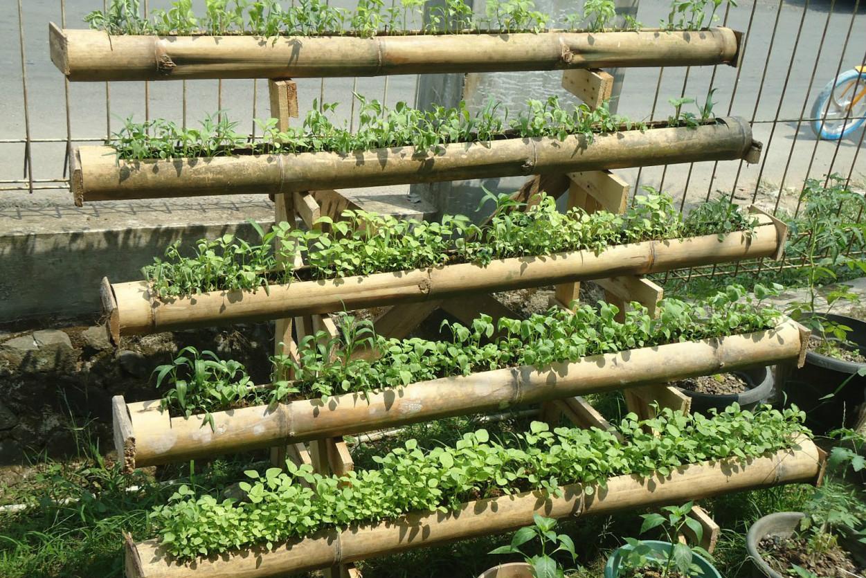 agriculture90.blogspot.com