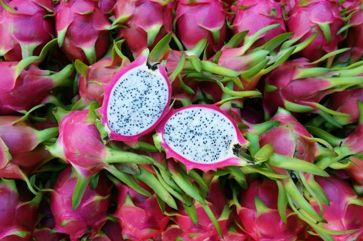 pitaya-ejder-meyvesi-nedir-kimdir