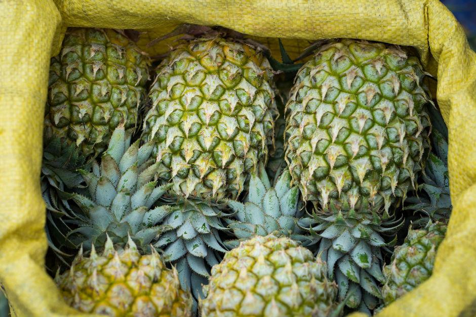 ananas-nasil-olgunlasir