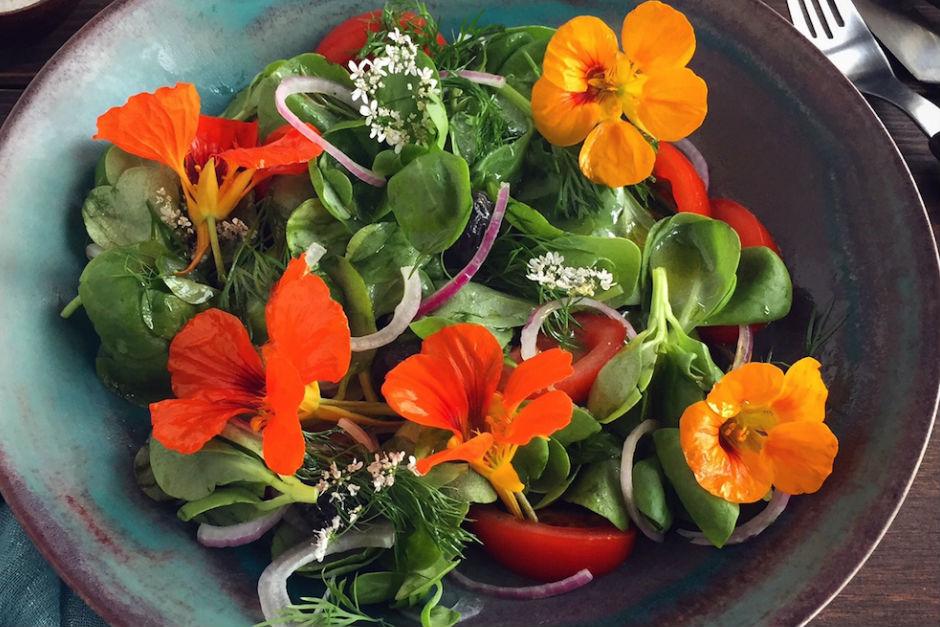 Kırmızı Soğanlı Semizotu Salatası Tarifi