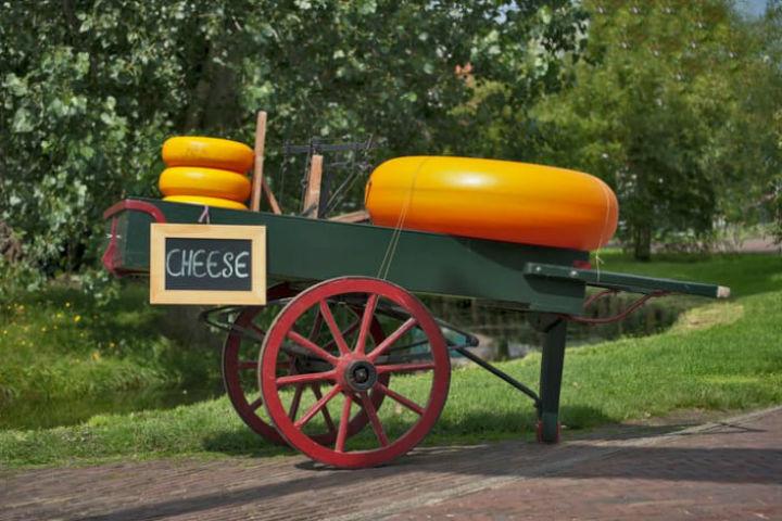 en-buyuk-peynir