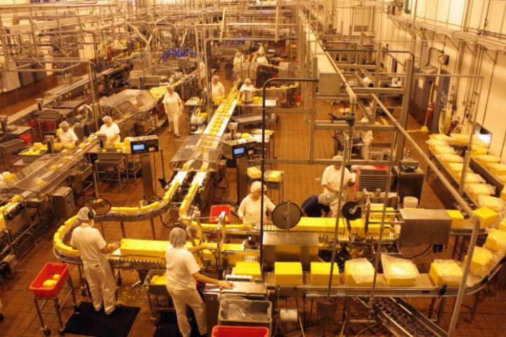 peynir-fabrikasi.jpg