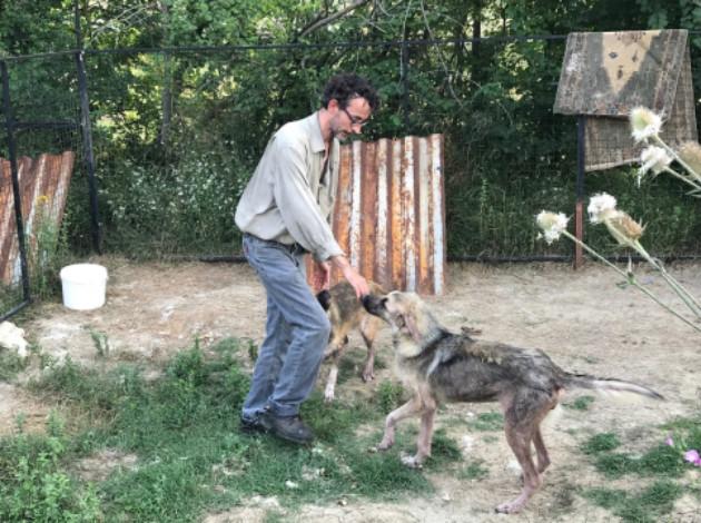 http://www.star.com.tr/yerel-haberler/baba-mirasini-sokak-hayvanlari-icin-harcadi-111254/ | star