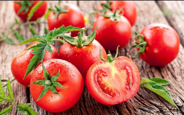domates-test-yeni