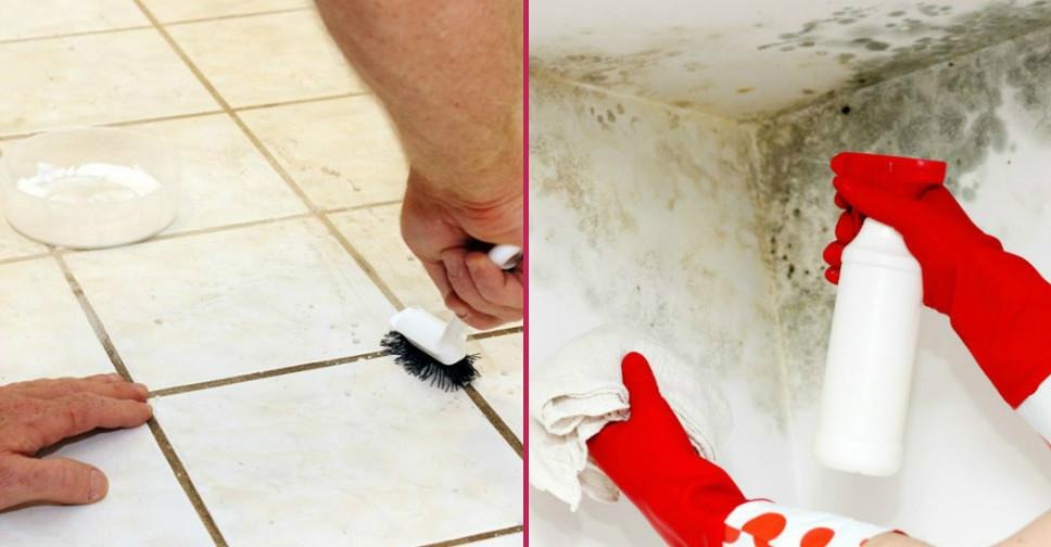 Duvarda Dolapta Ve Banyoda Oluşan Küf Nasıl Temizlenir Yemekcom