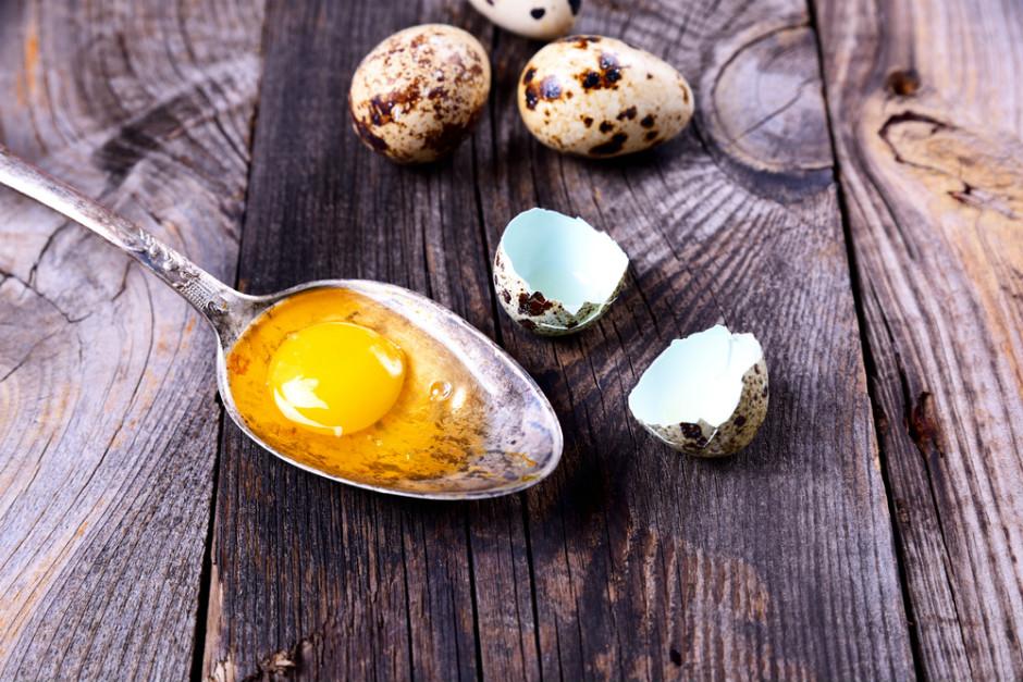 bildircin-yumurtasinin-faydalari-3