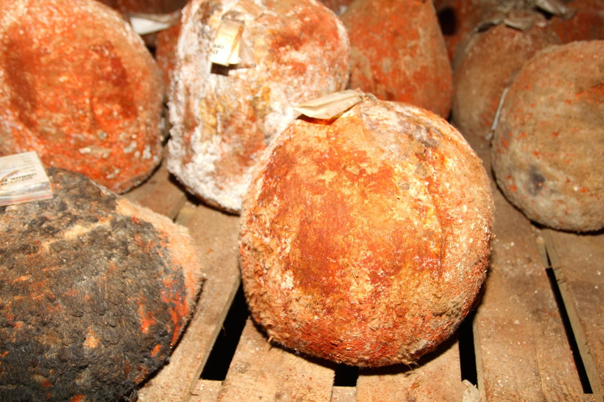 Mağaradan gelen şifa: Divle Obruk Peyniri 34