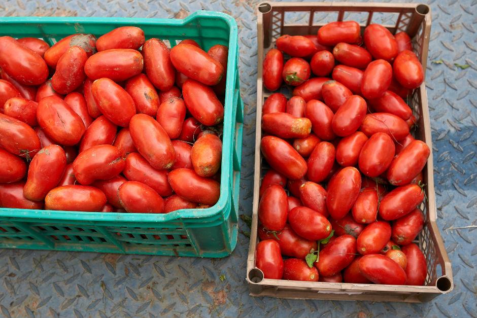 kislik-domates-konservesi