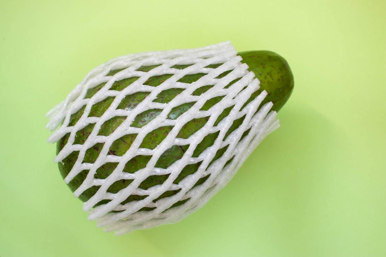 avokado-nasil-saklanir-yeni-3