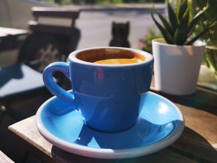 https://www.instagram.com/ugglacoffee/   instagram